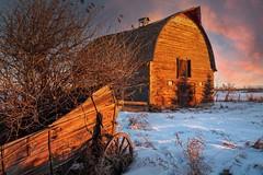 Wagon & Barn At Sunrise