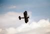 Gloster Gladiator Shuttleworth Flying Legends 2004 Duxford (15)