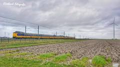 NSR 4023+NSR 4054 Lelystad ( NL)