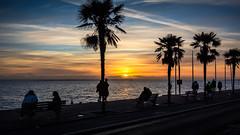 Photo of Sunset watchers...