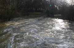 Photo of River Colne Flood Defences & overspill