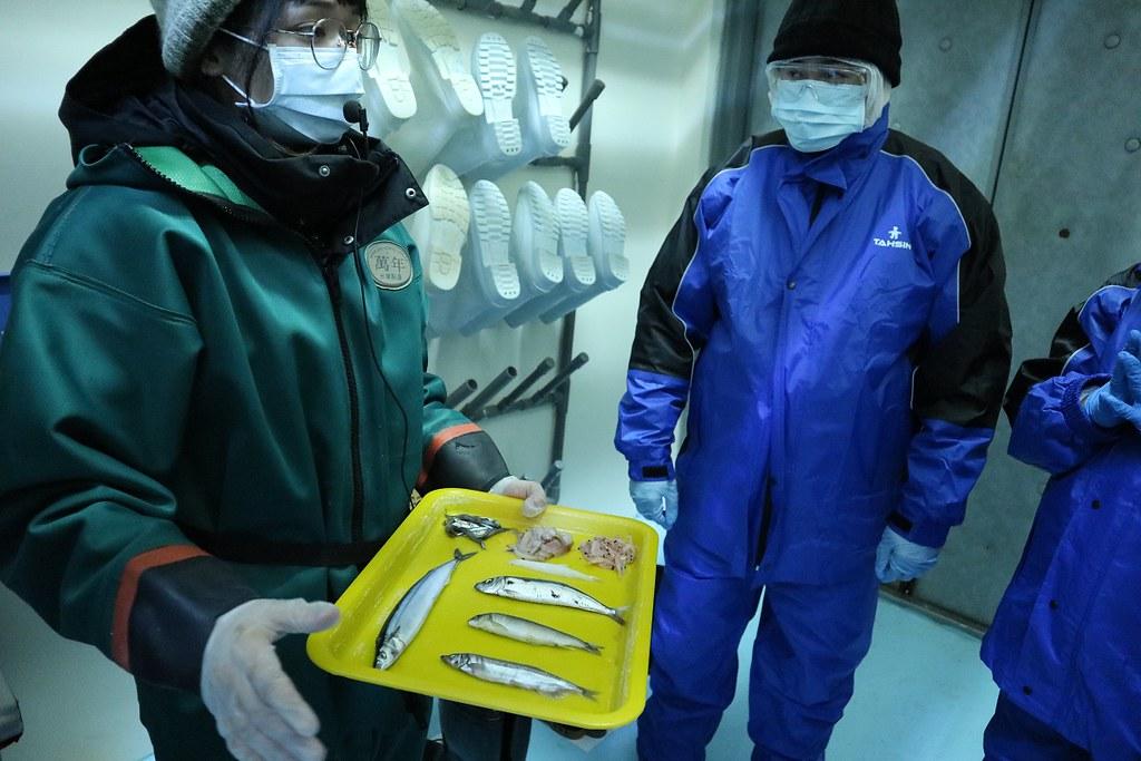 企鵝飼育照護體驗將帶你認識企鵝餌料與企鵝蛋等相關知識