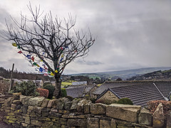 Photo of yorkshire prayer flags