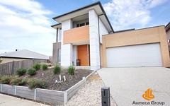 19 Viewbright Road, Clyde North VIC