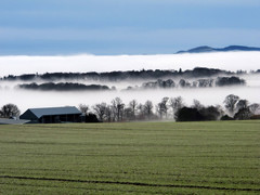 Photo of Fog on the Carse