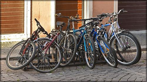 2018 June 16 ~ Bicycle stand (Città del Vaticano, Roma, Italia)