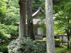 Sanzenin Temple | Ohara, Japan