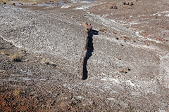 Erosion That Exposes Logs (Petrified Forest National Park)
