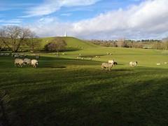 Photo of Good morning Milton Keynes