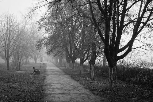 Taganrog 159 ©  Alexxx Malev