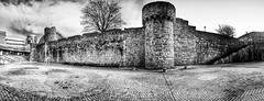 Photo of IMG_0859 - Old Walls - Southampton - 21.01.21