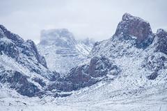 Chisos in Winter