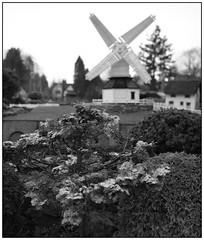 Photo of Bekonscot Model Village Mill