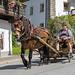 Folklore in Österreich 🇦🇹