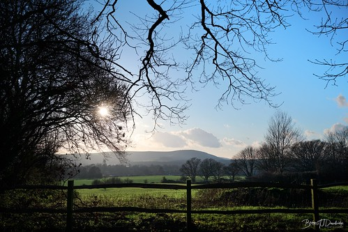 Winter sunshine over the South Downs