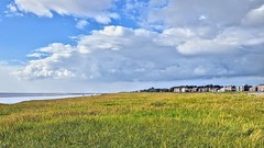 Photo of Green beach at Lytham