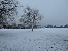 Photo of Uxbridge Common