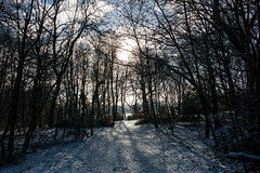 Photo of Heaton Park Snow