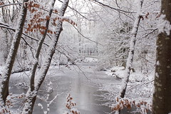 Photo of Frozen River