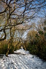Photo of Heaton Park