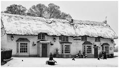 Photo of The Folly - 21-01-24_Snow_1005