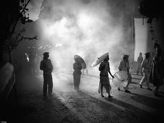 Misty in Lisbon