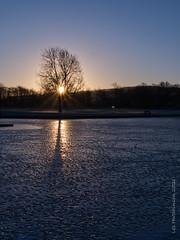 Photo of 2021 01 24 - frozen sunrise