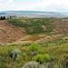 Alice Mine (Butte, Montana, USA) 8