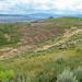 Alice Mine (Butte, Montana, USA) 3