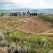 Alice Mine (Butte, Montana, USA) 5