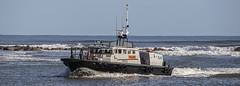 Photo of Pilot boat Montrose Angus