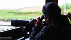 Photo of Spotter In The Hide - IMG_4999 - Edited