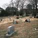 DSCF0105_Cemetery