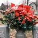 DSCF0104_Cemetery