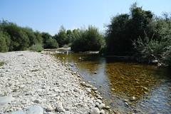 Rivière @ Vallon de l'Allondon @ Russin