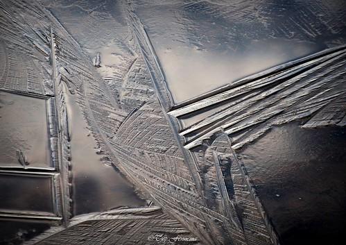 ijs in het Krarbos (Lelystad)
