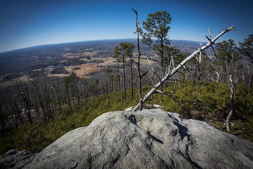 Professional-North-Carolina-Photographer-Jeff-White-Jwhitephoto