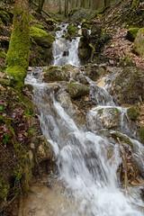 Ruisseau de Sainte-Catherine @ Vallon de Sainte-Catherine @ Annecy