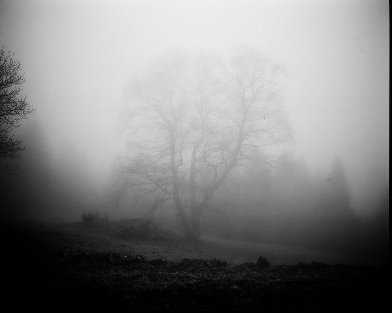 Mist Loading.