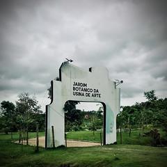 Jardim Botanico da Usina de Arte