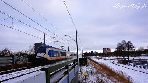 NSR 2418+2423 ( SLT IV ) Lelystad ( NL)