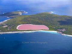 Pink Lake Hellier_DSF2664