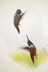 Attack 1 (Watercolor)
