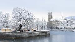 Grossmünster im Schnee