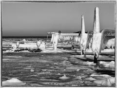 2021-02-13 11.31.27 - Baby it's cold outside, Uge 6, Fjellerup, Grenå - _2135110 - ©Anders Gisle Larsson