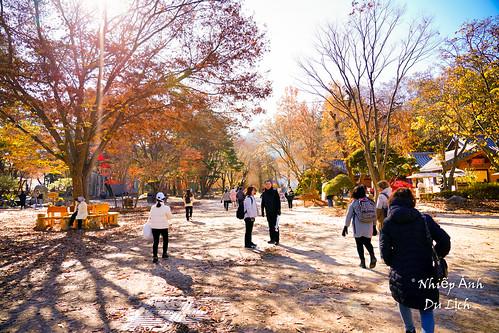 20191114_105412 South Korea