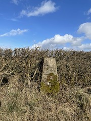 Photo of Trig Point, Montgreenan, East Ayrshire