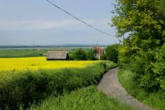 Photo of Church Lane