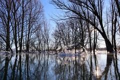 Ice Wageningen feb 2021