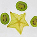 53/365 Carambola and Kiwi Berry slices